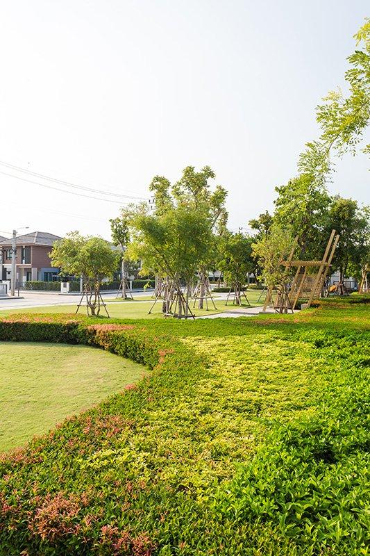Habitia Shine Thakham - Rama 2