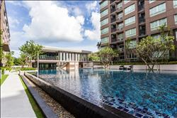 dcondo Campus Resort Kuku Phuket 公寓大廈 普吉市(Muang Phuket ) , 普吉