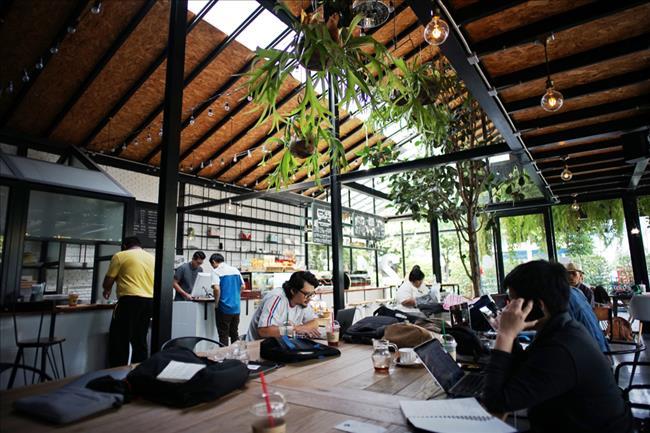 Chiang Mai Digital Nomad